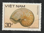 Sellos de Asia - Vietnam -  929 - Concha