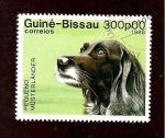 Sellos de Africa - Guinea -  746