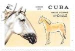 Sellos de America - Cuba -  caballos
