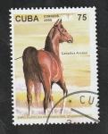 Sellos del Mundo : America : Cuba :  3458 - Caballo árabe