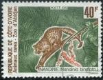 Stamps Africa - Ivory Coast -  Civeta africana