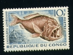 Stamps Africa - Republic of the Congo -  Caulolepis longidens