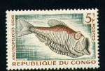 Stamps Africa - Republic of the Congo -  Argyropelecus gigas