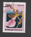 Stamps Togo -  Epidendrum atroporpreum