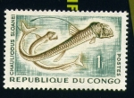 Stamps Africa - Republic of the Congo -  Chauliodus sloanei