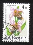 Sellos de Europa - Hungría -  Orquídeas