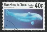 Stamps Benin -  710 CY - Delphinapterus leucas