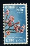 Stamps Africa - Somalia -  Adenium somalense