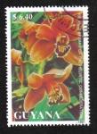 Sellos de America - Guyana -  Orquídeas