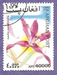 Stamps : Asia : Afghanistan :  SC21