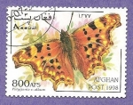 Stamps : Asia : Afghanistan :  SC31