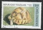 Stamps : Africa : Togo :  1517 - Tortuga