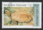 Stamps : Africa : Togo :  1519 - Tortuga