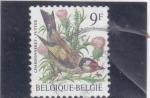 Sellos del Mundo : Europa : Bélgica : ave