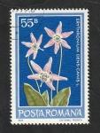 Sellos del Mundo : Europa : Rumania :  3157 - Flor
