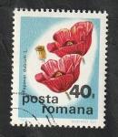 Sellos del Mundo : Europa : Rumania :  2913 - Flor salvaje