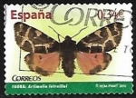 Stamps Europe - Spain -  Fauna - Artimelia latreillei