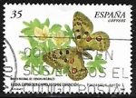 Stamps Europe - Spain -  Fauna - Parnassius apollo
