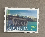 Stamps Europe - Slovenia -  100 Años alpinismo