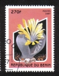 Stamps Africa - Benin -  Cactus