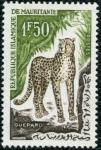 Stamps Africa - Mauritania -  Guepardo
