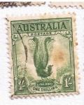 Sellos del Mundo : Oceania : Australia : Lire Bird