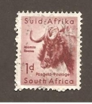 Stamps Africa - South Africa -  INTERCAMBIO
