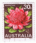 Sellos del Mundo : Oceania : Australia : Waratah