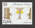 de America - Cuba -  Kmogonia castalia