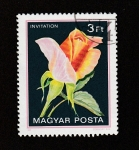 de Europa - Hungría -  Tulipán var. Invitation