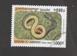 de Asia - Camboya -  Diadophis punctata