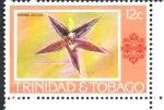 de America - Trinidad y Tobago -  PAPHINIA  CRISTATA