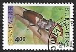 de Europa - Bulgaria -  Insectos - Lucanus cervus