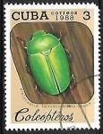 de America - Cuba -  Insectos - Platycoelia flavoscutellata