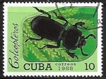 de America - Cuba -  Insectos - Odontotaenius zodiacus