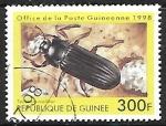 de America - Guinea -  Insectos - Tenebrio molitor