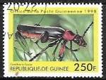 sello : Africa : Guinea : Insectos - Cantharis fusca