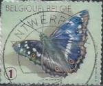 Sellos de Europa - Bélgica -  2012 - Mariposa