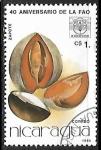 Stamps : America : Nicaragua :  Frutas - Zapote
