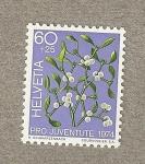 Sellos de Europa - Suiza -  Pro Juventute 1974