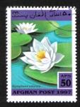 Sellos del Mundo : Asia : Afganistán :   Aquatic Plants