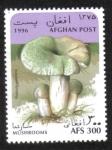 Stamps Afghanistan -  Hongos