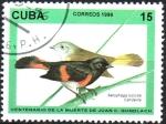 Sellos del Mundo : America : Cuba : CENTENARIO  DE  LA  MUERTE  DE  JUAN  C.  GUNDLACH.  COLIROJO  AMERICANO.