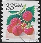 Stamps : America : United_States :  Frambuesas