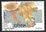 de Europa - España -  Setas - Dermocybe cinnamomea