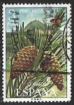 Stamps Europe - Spain -  Flora - Maritime Pine