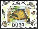Stamps Asia - United Arab Emirates -  Peces - Pomacanthus annularis