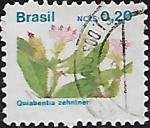 de America - Brasil -  Intercambio
