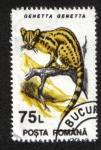 Stamps Romania -  Mamiferos