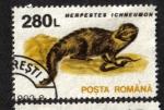 de Europa - Rumania -  Mamiferos